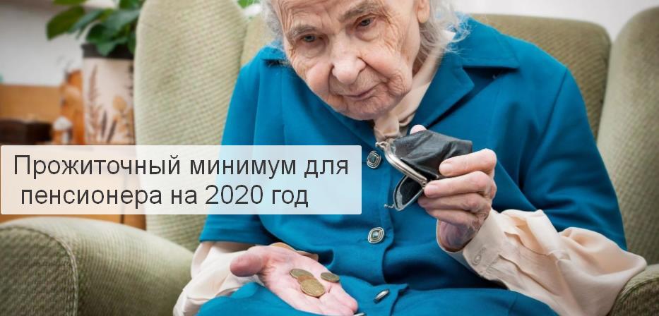 Прожиточный минимум для пенсионера на 2020 год
